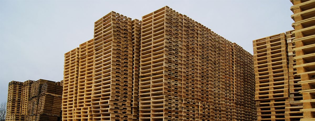 Wooden Pallets Field